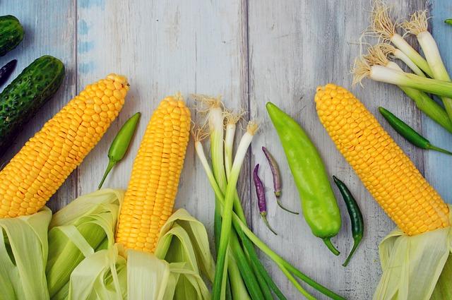 kukuřice a papriky