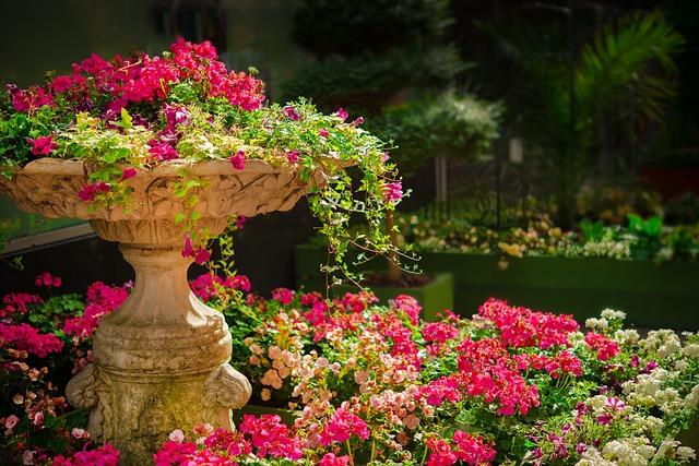 rozkvitnutá záhrada.jpg