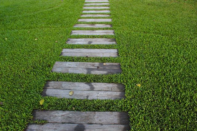 Cestička cez trávnik.jpg