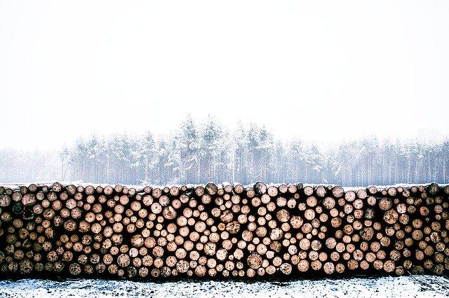 uskladnené drevo.jpg